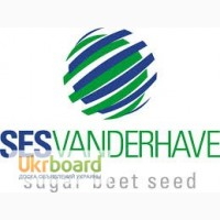 Семена сахарной свеклы СЕСВандерхавеБельгия