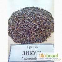 Семена гречихи Дикуль, Девятка, Антария, Сумчанка