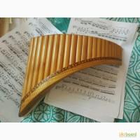 Продам терміново пан флейту (най)