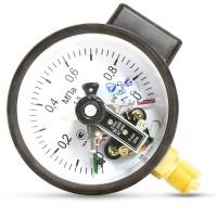 Манометры сигнализирующие с электроконтактной приставкой ДМ Сг 05