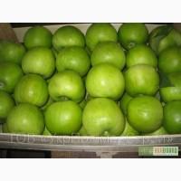 Закупаем яблоко на переработку в любых объемах!