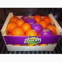 Мандарин, апельсин из Турции и ИСПАНИИ