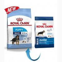 Royal Canin Maxi Junior корм для щенят крупных пород Макси Юниор Роял Канин Maxi Pappy
