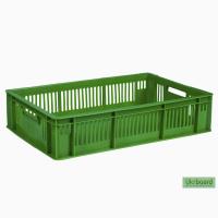 Пищевой пластиковый ящик 600х400х140 для суточных цыплят