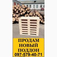 Поддон новый. Купить поддон новый Украина, европоддоны купить, купить поддон деревянный