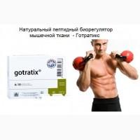 Пептиды для мышечной ткани - Готратикс