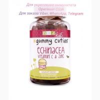 Natural Dynamix с эхинацеей витамином С и цинком для детей. Витамины NDX, витамины