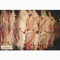 Робота ня мясокомбінаті в Польщі