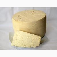 Закваски для сыра - Бесплатная доставка Новой почтой