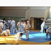 Групповые занятия айкидо для взрослых, Печерск (центр)