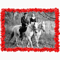 Подарок девушке на 8 марта - прогулка на белых лошадях