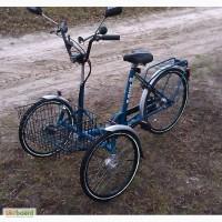 ������������ ��������� �T-Bikes�, ������������: 2 ������+1����. (���)