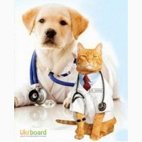 Оптовая ветеринарная аптека ВЕТПРЕПАРАТЫ