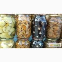 Продам грибы, Белые, лисички, грузди, опята, маслята