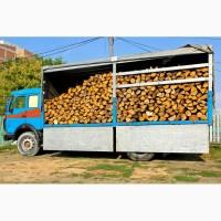 Предлагаем дрова колотые в Киеве и области. Дрова акация. Конча заспа, обухов