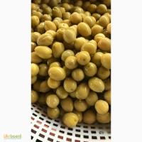 Оливки из Египта