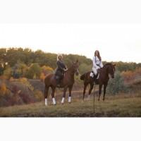 Конные прогулки, обучение верховой езде, фотосессии с лошадьми