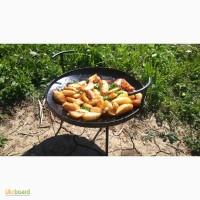 Сковорода туристическая (малая)