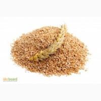 Мука пшеничная кормовая борошно кормове, висівки житні пшеничні