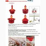 Автоматическая система кормления птицы