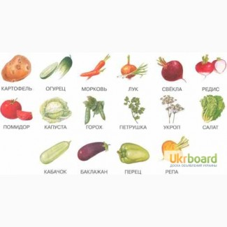 Куплю оптом картошку и др. овощи