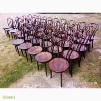 Венские стулья бу для кафе