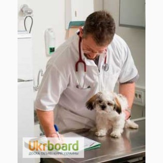 Ветеринарные препараты оптом