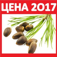 2017 ОРЕХИ КЕДРОВЫЕ Купить Оптом Цена КГ! Лицензия на Экспорт Орехи Квота в Европу