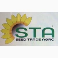 Купить семена подсолнуха под Евролайтинг НС-Х-7637 и НС-Х-7634 (Нови Сад) Сербия
