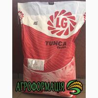 Семена подсолнечника Лимагрейн LG 5580 LG 5555 LG 5542 LG Tunka