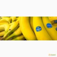 Бананы оптом (Эквадор)