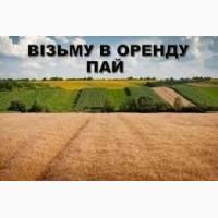 Возьму в аренду Пай или ОСГ (2, 0 га) граничащий с с. Комишанка, Недригайловского р-на