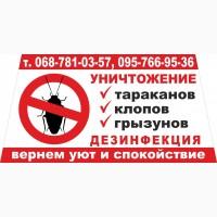 Уничтожение тараканов, клопов, блох, грызунов в Каменском