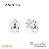 Серьги PANDORA белая орхидея 290749EN12