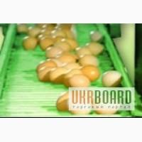 Лента транспортерная конвейерная для яйцесбора