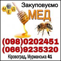 Закупівля меду з соняха в Черкаській обл