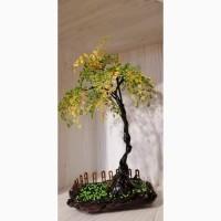 Купить дерево недорого, декоративное красивое дерево