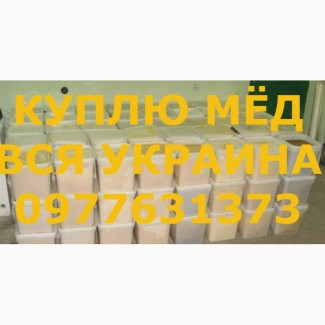 Куплю мёд по ХАРЬКОВСКОЙ обл. и вся УКРАИНА