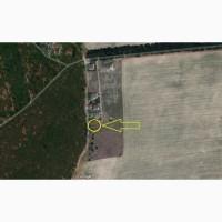 Участок 10 соток в лесу в Киевской области Заборье ( Забір#039;я )