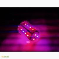 Фитолампа для боковой подсветки растений 69Вт