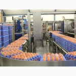 Ящики для перевозки яиц в лотках, упаковка для яиц