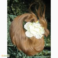 Куплю волосы Харьков.Самые высокие цены