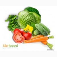 Продам пакетоване насіння овочевих культур