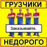 Услуги грузчиков не дорого