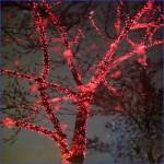 Праздничное новогоднее оформление, украшение деревьев гирляндами, подсветка деревьев