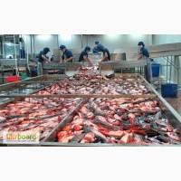 Робота в Польщі на рибному заводі