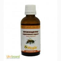 Настойка пчелиного подмора оптом