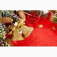 Карпаты туры Рождество, Буковель на Рождество из Киева