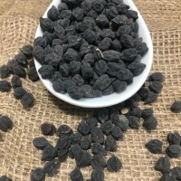 Нут чорний, турецький горох, баранячий горох, пупковий горох, (Cicer arietinum)