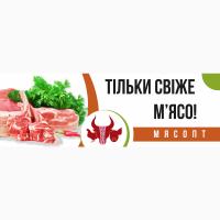 М#039;ясо оптом та в роздріб в Києві та Київській області